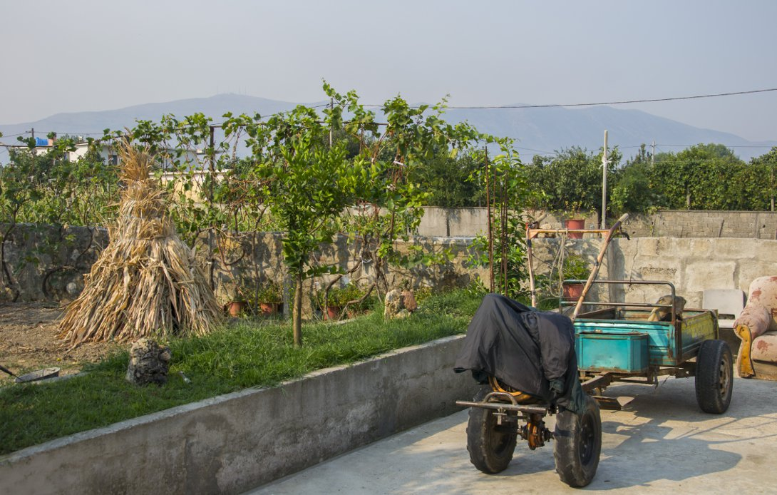 Zdjęcie z podwórka albańskiego domu