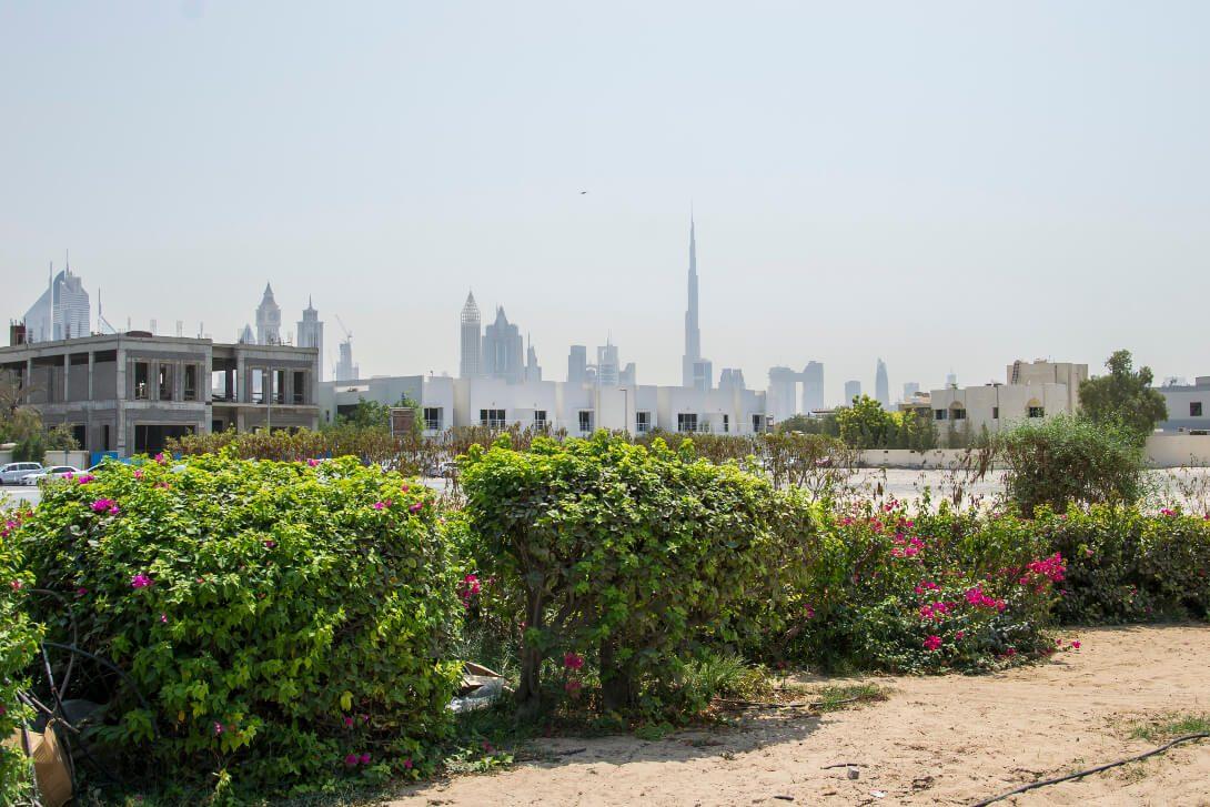 Widok na Downtown Dubai z Jumeirah