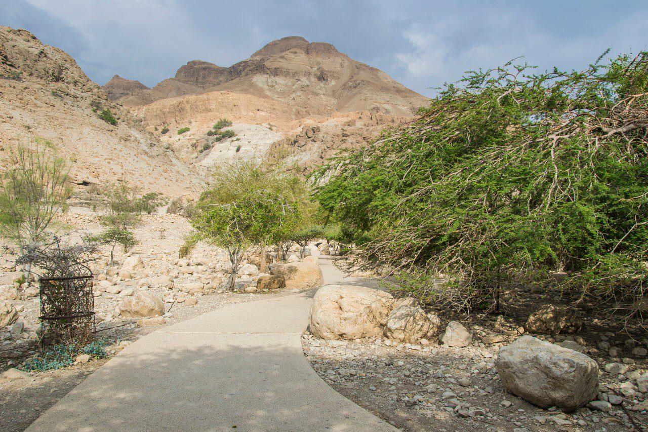 Trasa do wodospadu Dawida w Ein Gedi w Izraelu.
