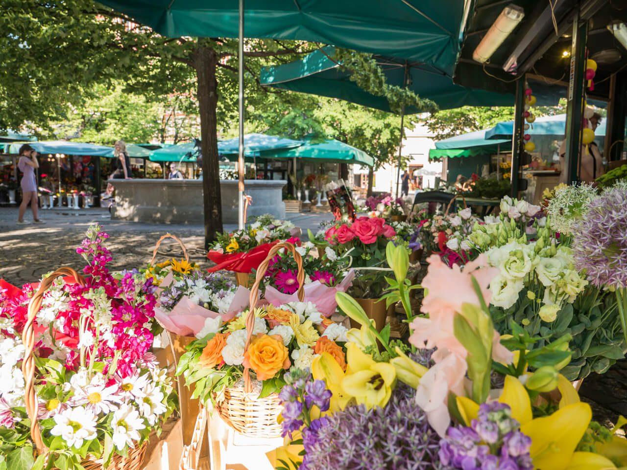 Targ kwiatowy na Placu Solnym we Wrocławiu