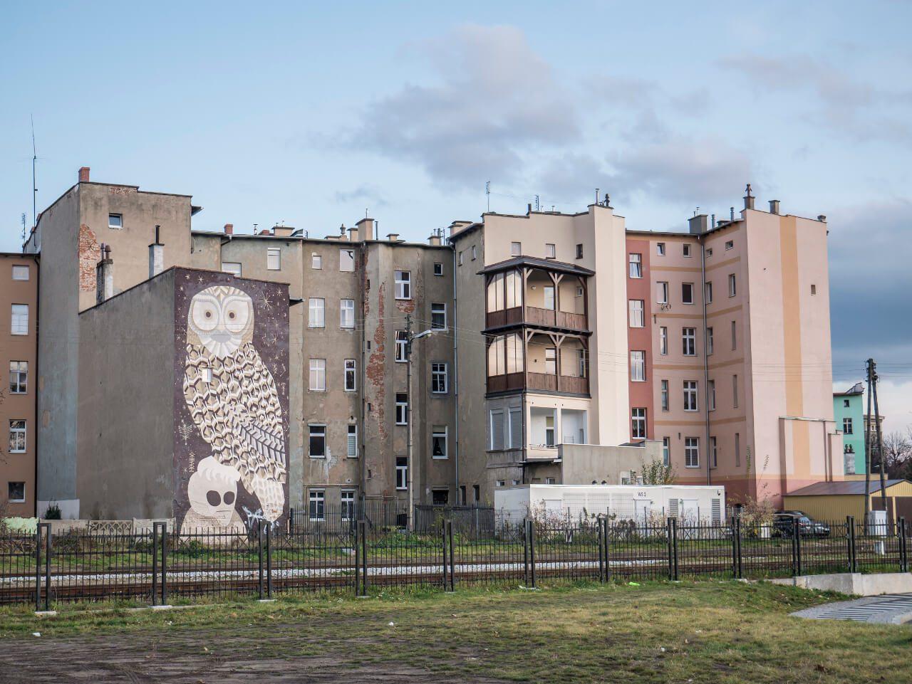 Mural z sową w Świdnicy