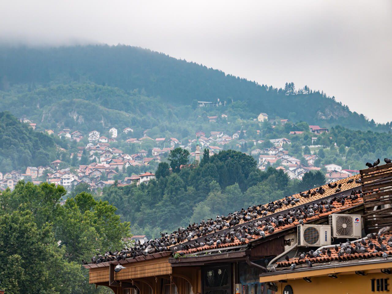 Targ Baščaršija z zabudowaniami Sarajewa w tle