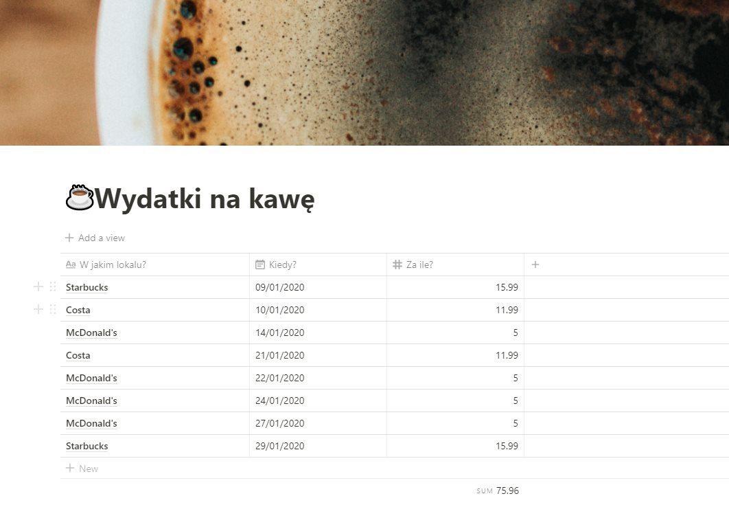 Screen z programu Notion