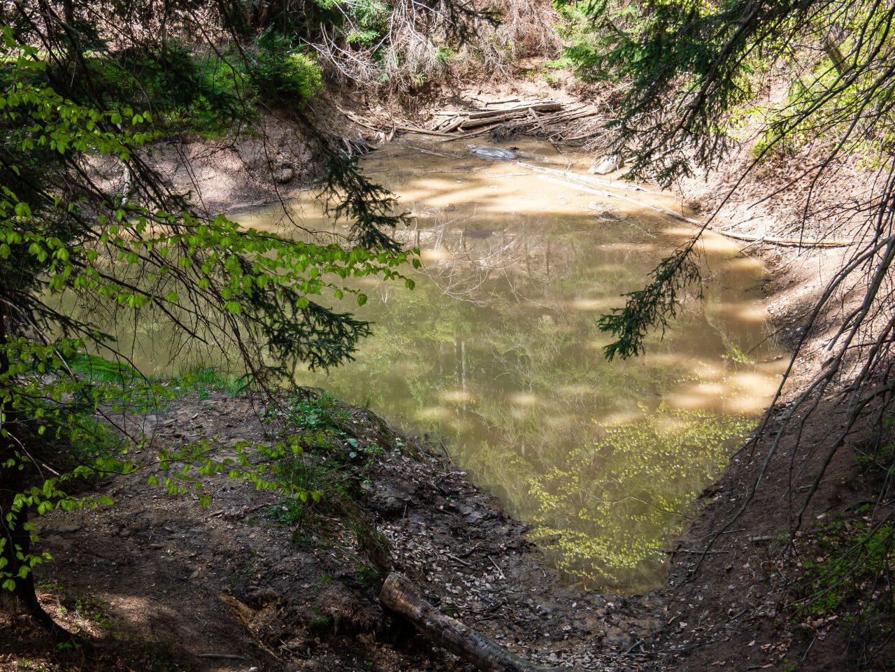 zielone jeziorko rudawy janowickie kolorowe jeziorka