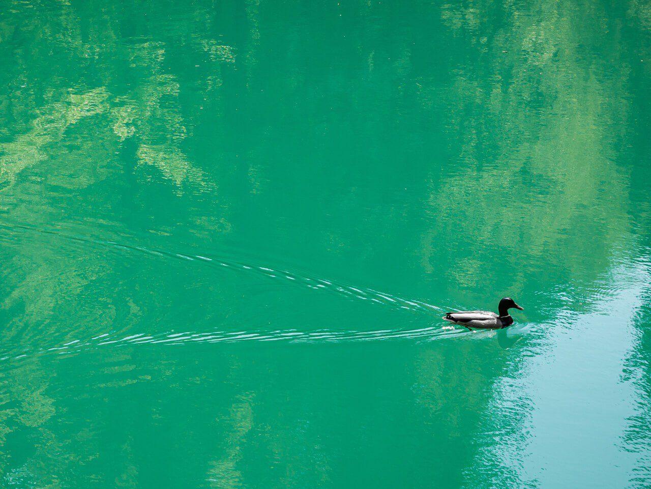 błękitne niebieskie jeziorka rudawy janowickie