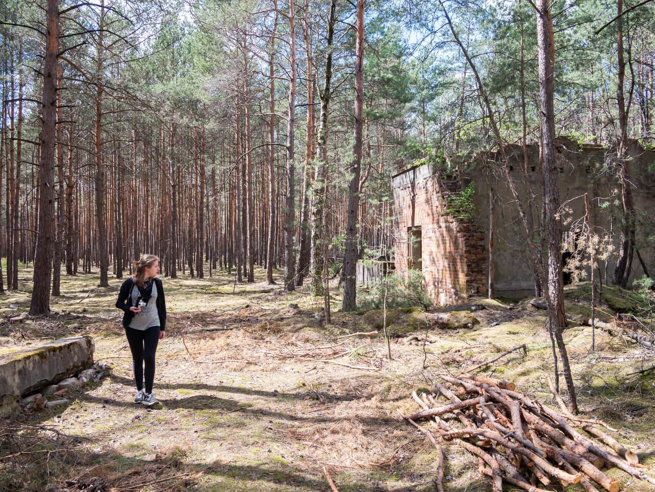 Lasy Nowogród Bobrzański kompleks DAG