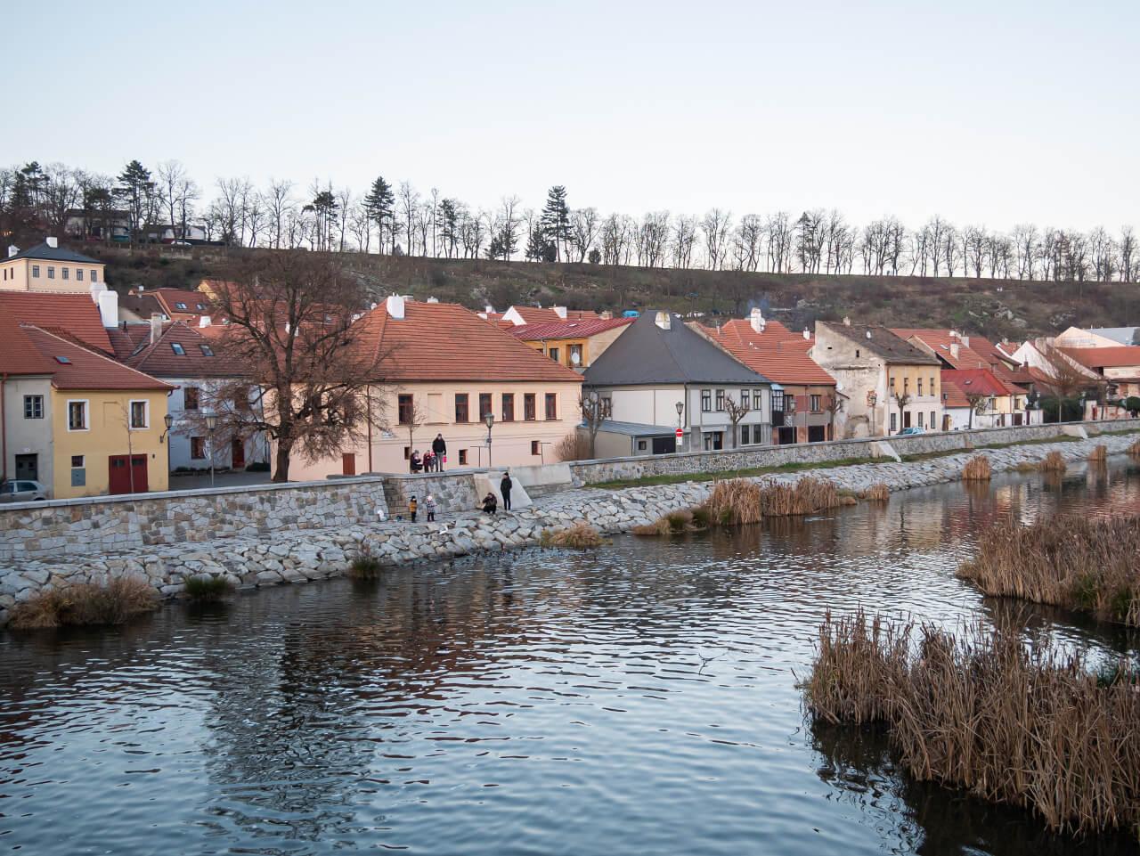 Rzeka Jihlava Trebic Czechy