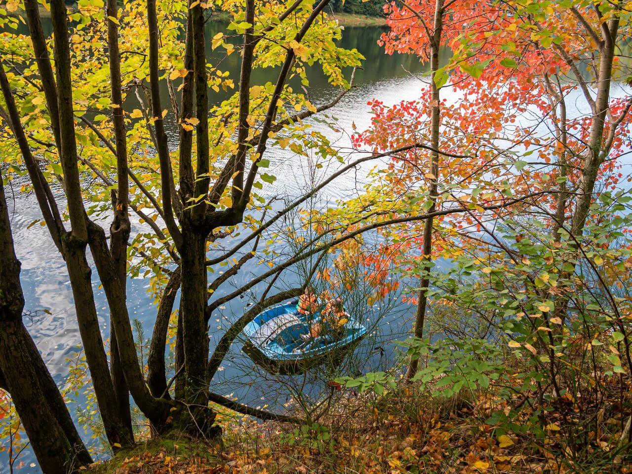 Jesień Jezioro Bystrzyckie Zagórze Śląskie