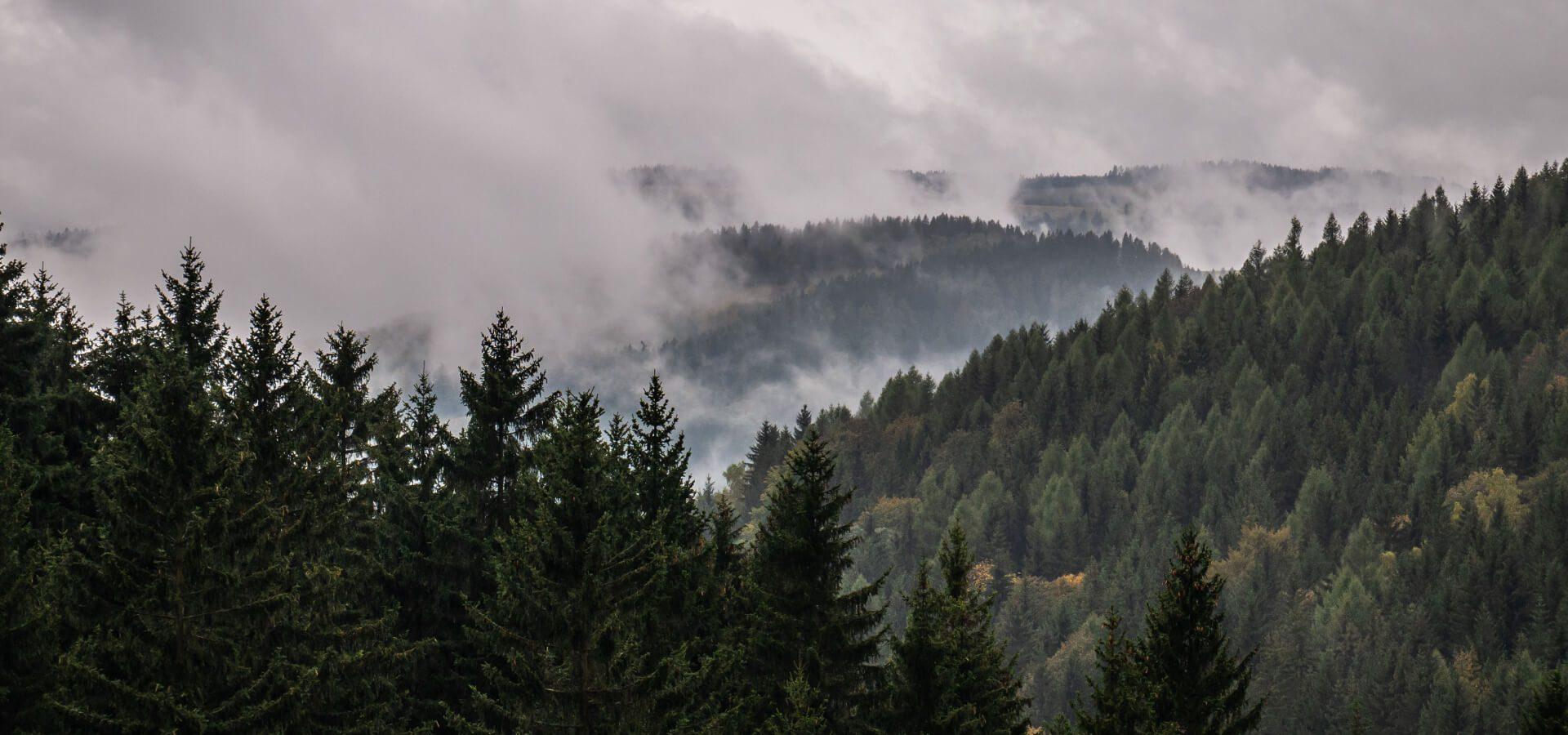 Góry Sowie - co przed nami kryją? Poznaj atrakcje najbardziej tajemniczego zakątka Polski