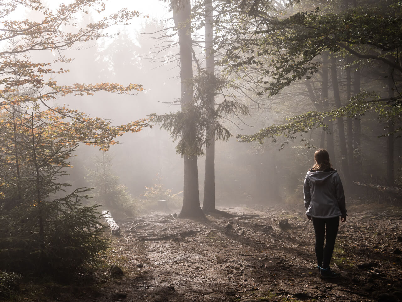 Szlak Kalenica góry Sowie