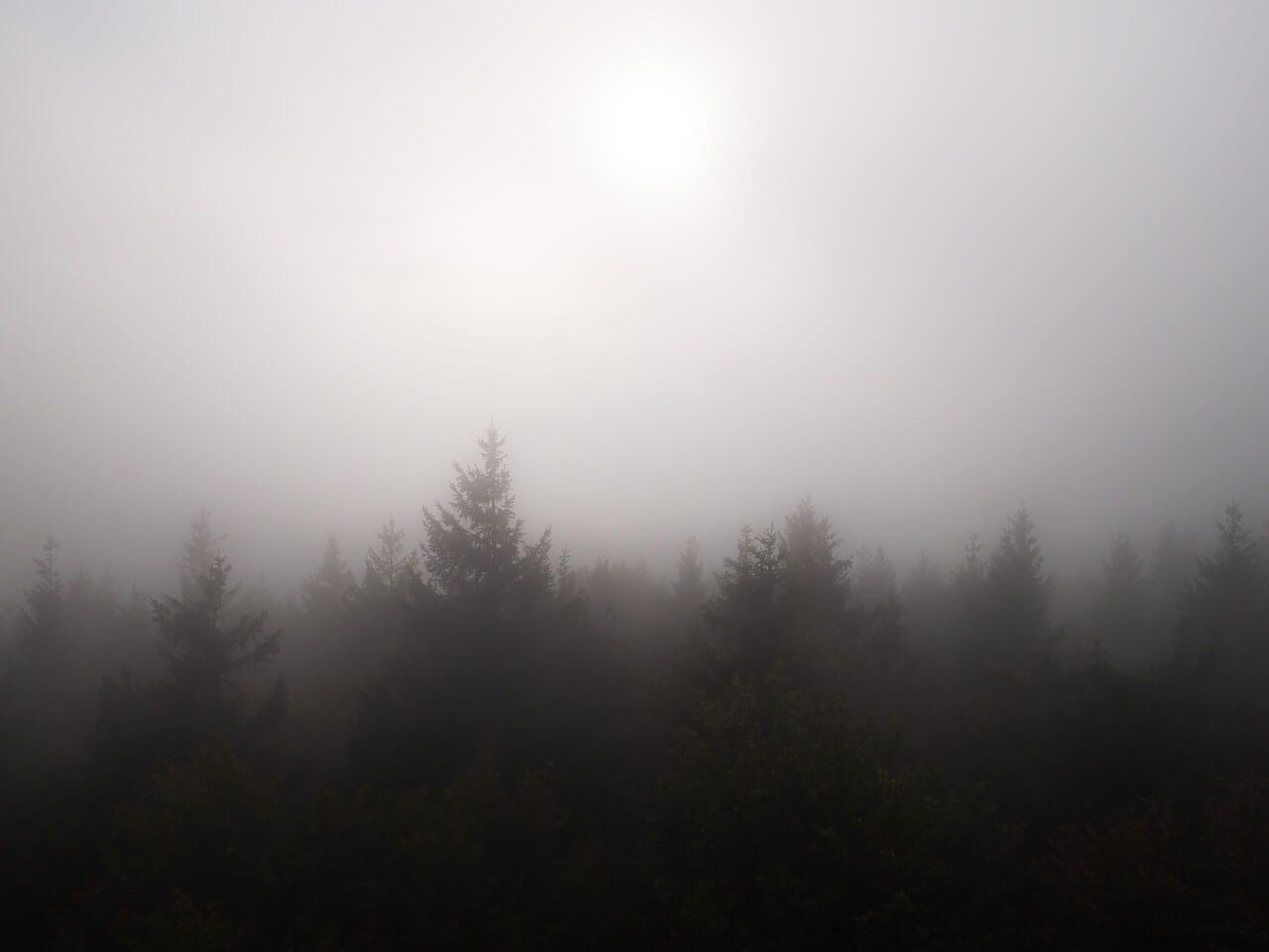Widok wieża widokowa Kalenica góry sowie