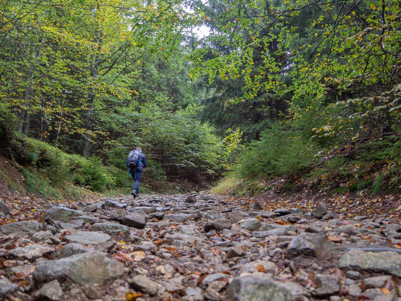 Szlak turystyczny Góry Sowie