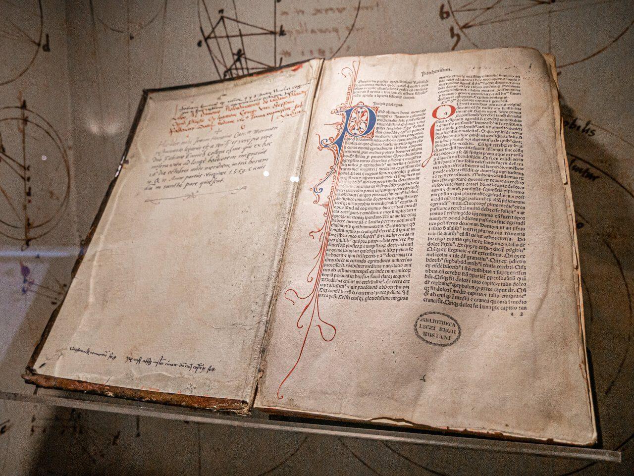 Kopernik Olsztyn ekspozycja zamek