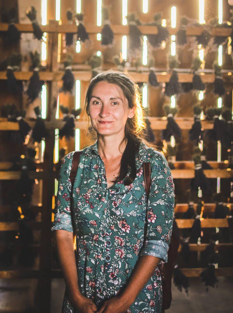 Ania Nowak Wędrowne Motyle