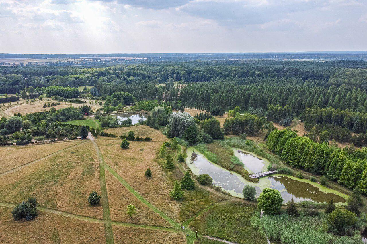 Arboretum Leśne Stradomia Wierzchnia5 Okolice Sycowa Atrakcje