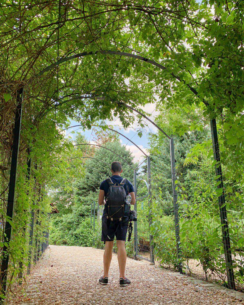 Arboretum Leśne Stradomia Wierzchnia7 Obok Sycowa Co Warto Zwiedzić