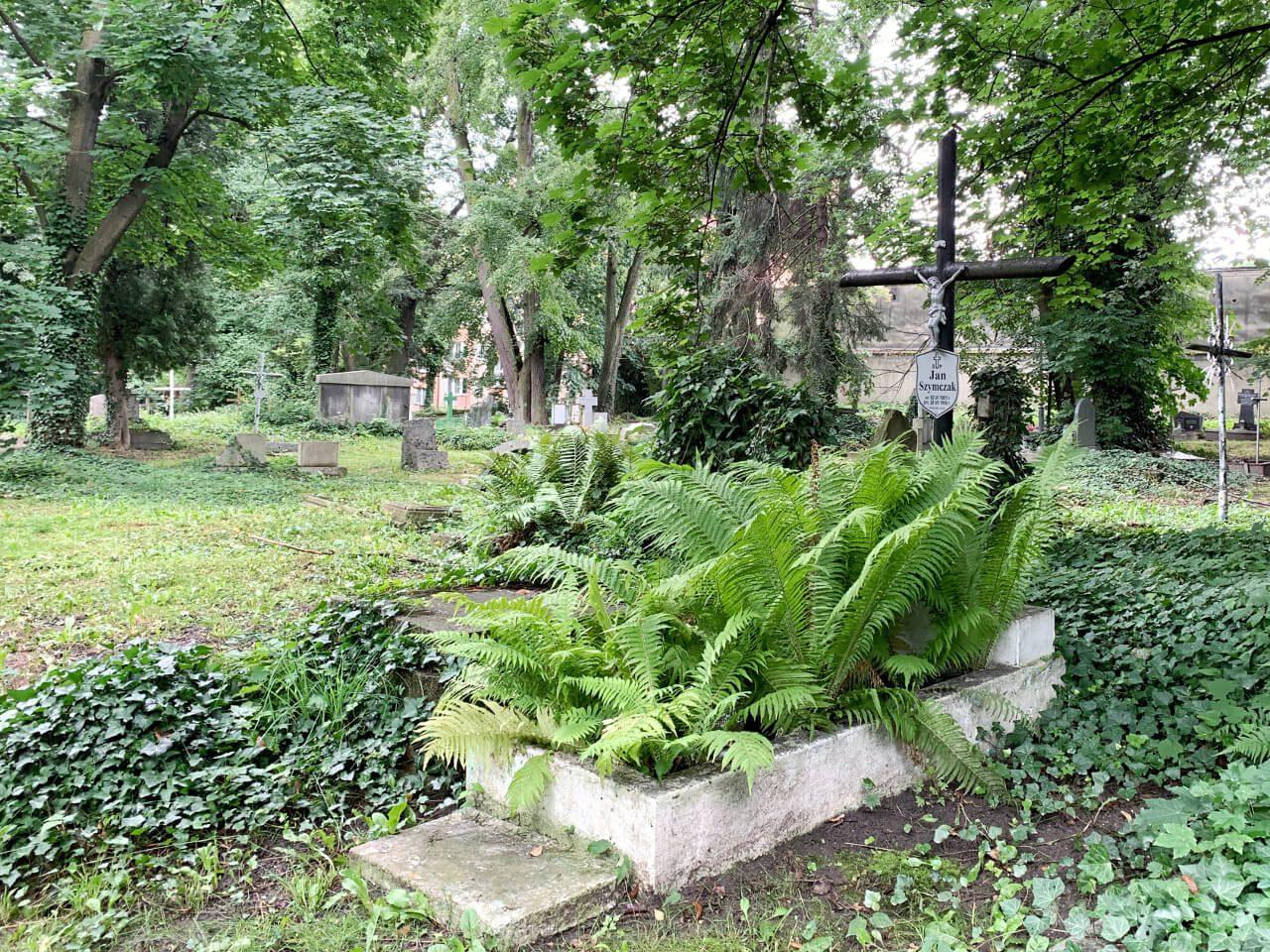 Cmentarz w Ząbkowicach Śląskich Frankenstein