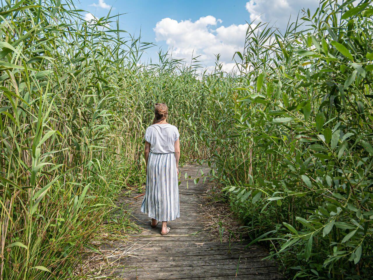 Arboretum Leśne Ciekawe Miejsca Atrakcje Stradomia Wierzchnia5 W Okolicach Sycowa