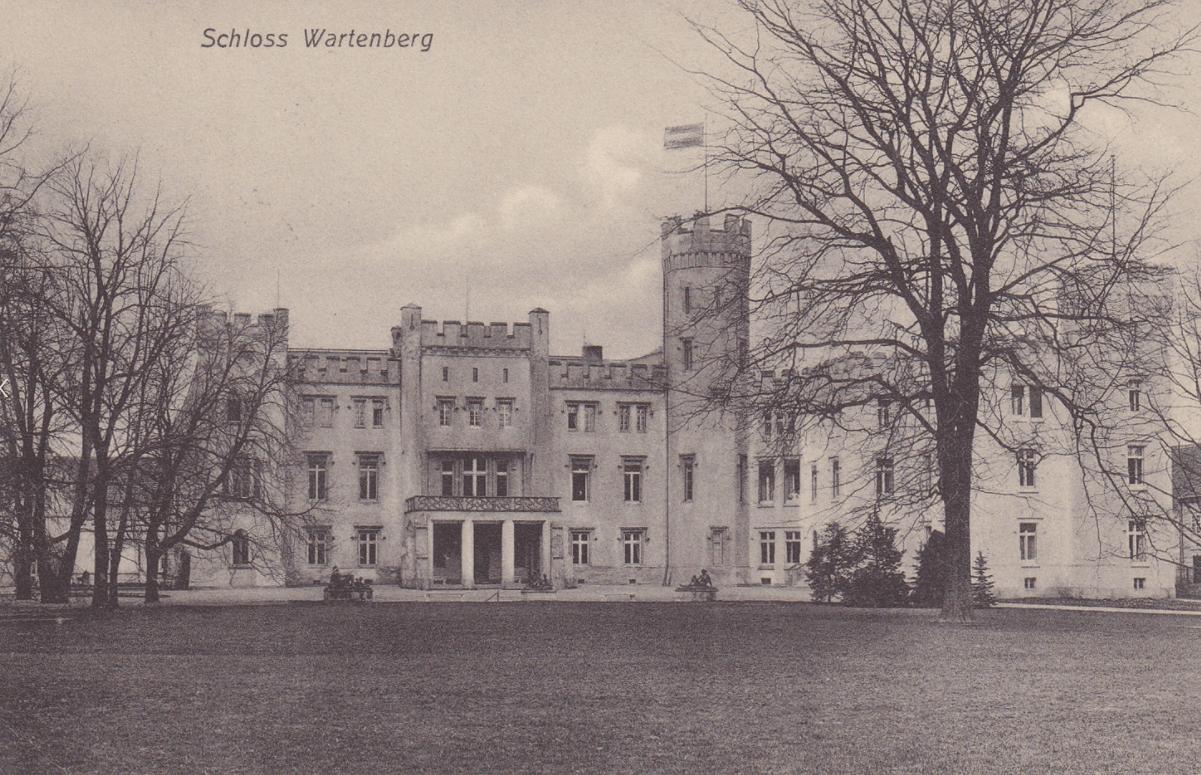 Zamek Bironów Syców