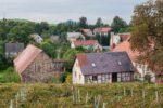 Winnica Agata park krajobrazowy chełmy