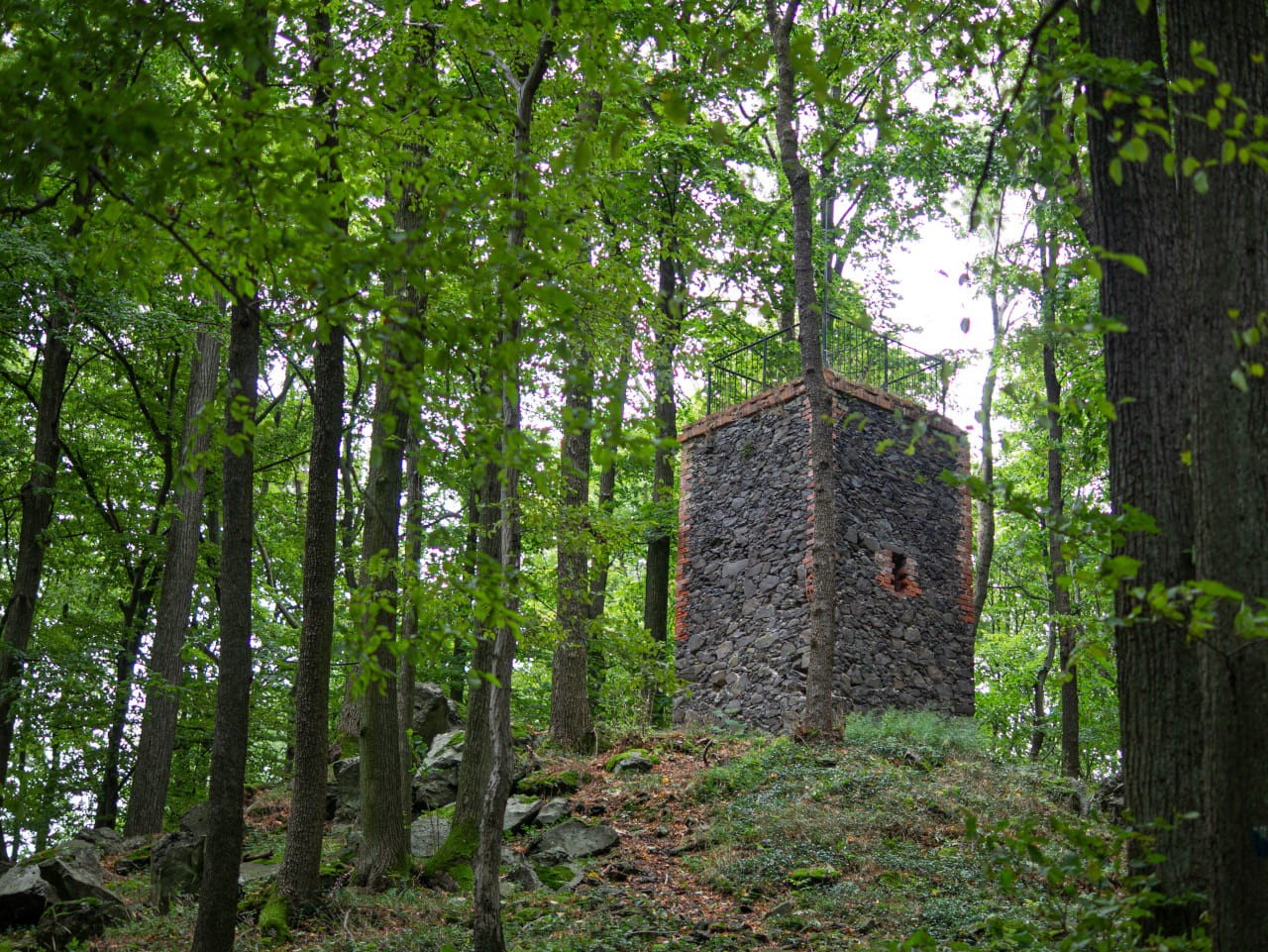 Park Krajobrazowy Chełmy3 Wzgórza Muchowskie Muchów Niska Wieża Widokowa Bez Widoku