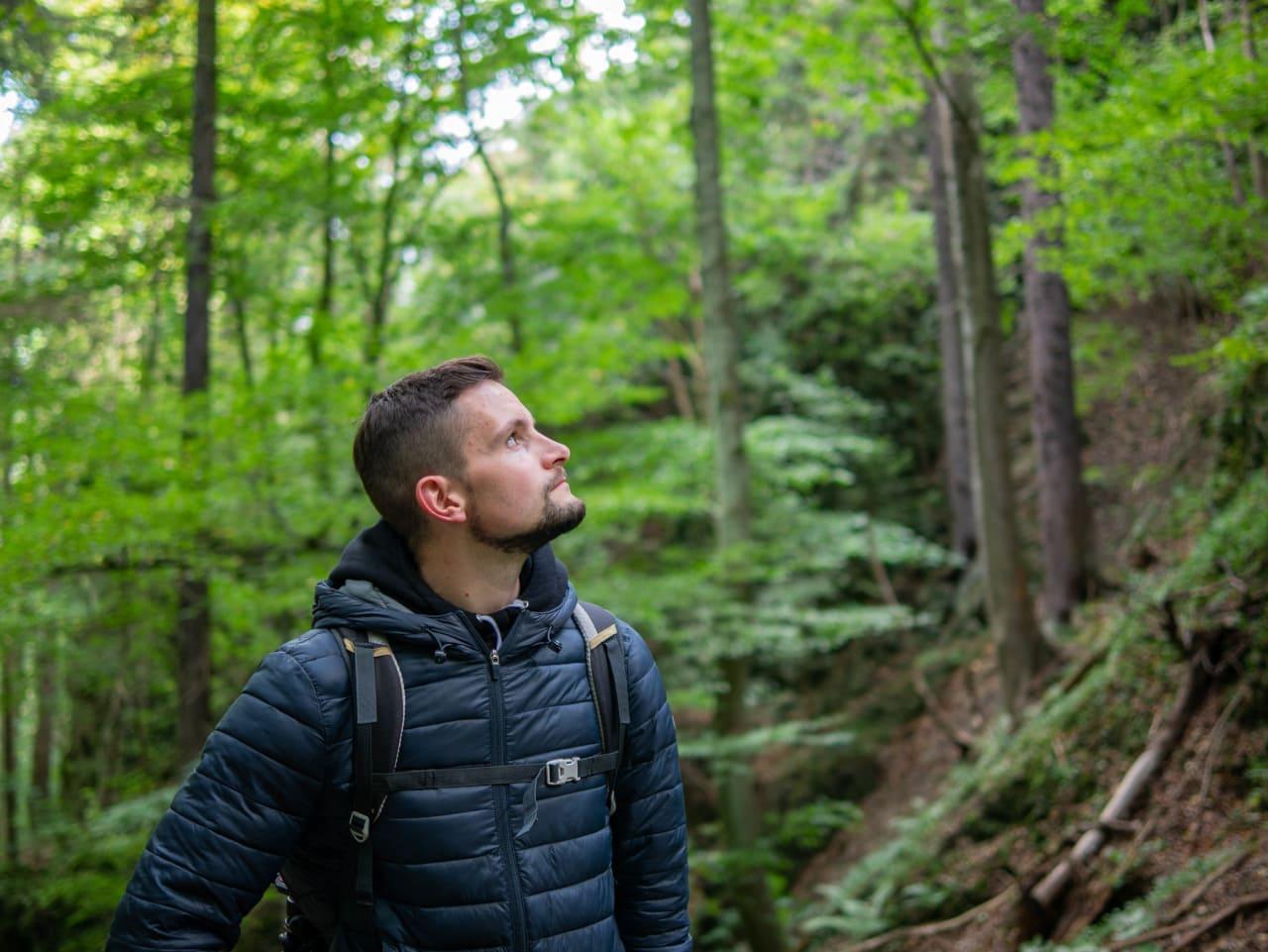 Dolnośląski Szlak Piwa i Wina Park Krajobrazowy Chełmy Wzgórze Rataj Małe Organy Myśliborskie Co Zobaczyć Kraina Wygasłych Wulkanów Góry Kaczawskie