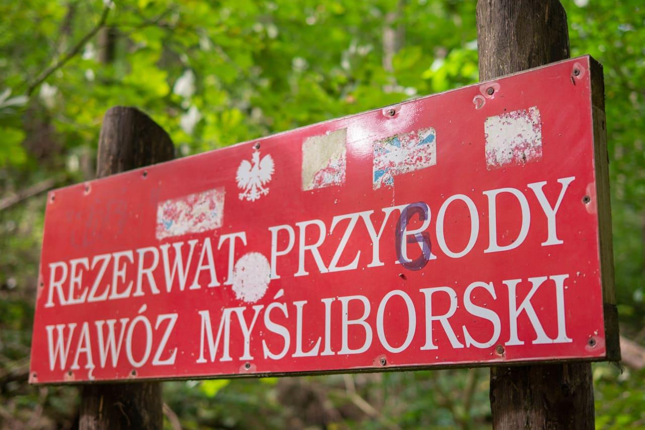 Rezerwat Przyrody Wąwóz Myśliborski w Parku Krajobrazowym Chełmy na Dolnym Śląsku Myślibórz Relaks Blisko Przyrody Ciekawostki Przyrodnicze Obszar Chroniony