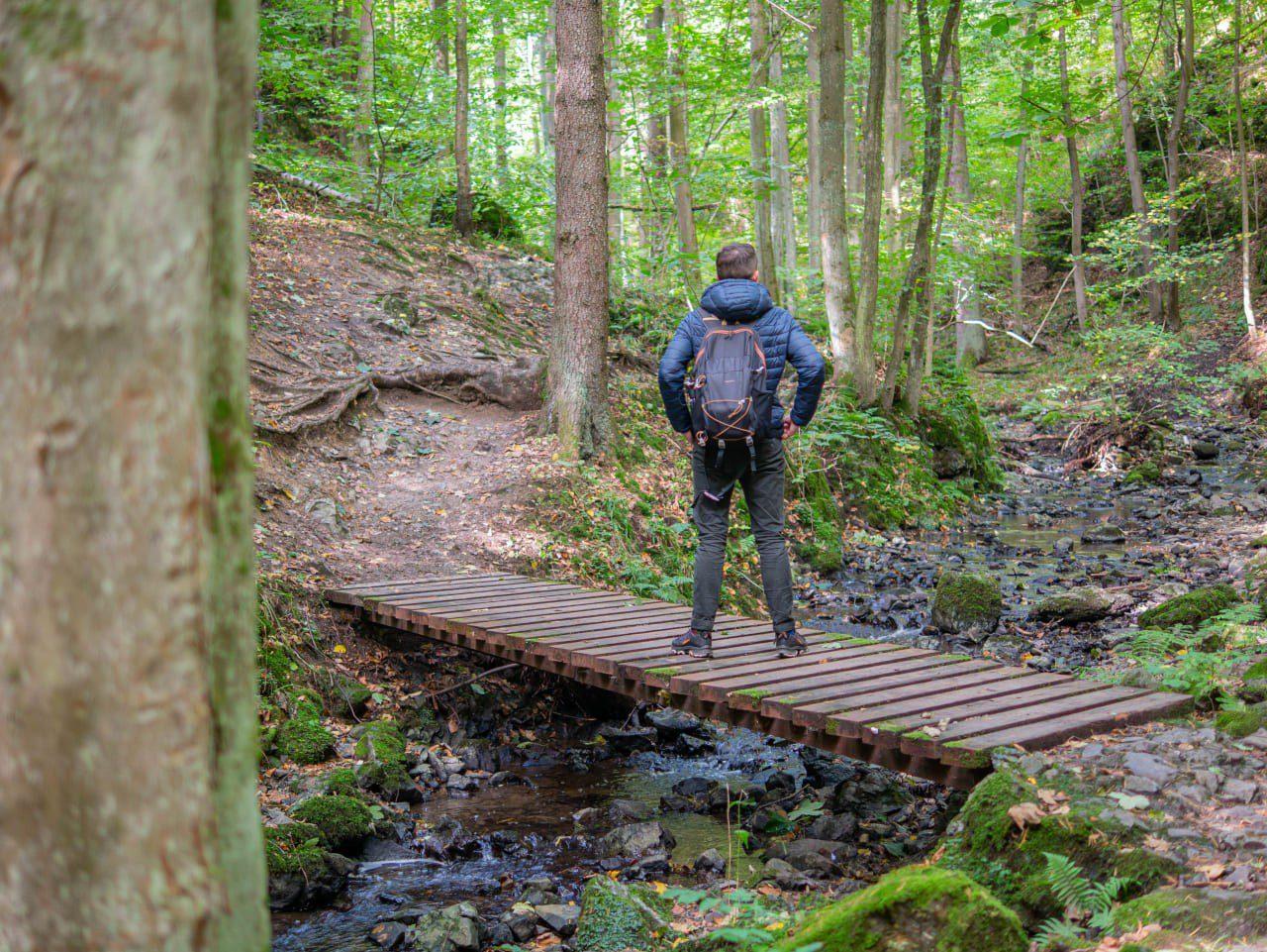 Rezerwat Przyrody Wąwóz Myśliborski w Parku Krajobrazowym Chełmy na Dolnym Śląsku Myślibórz Relaks Blisko Przyrody Miejsca Na Jesienny i Wiosenny Spacer