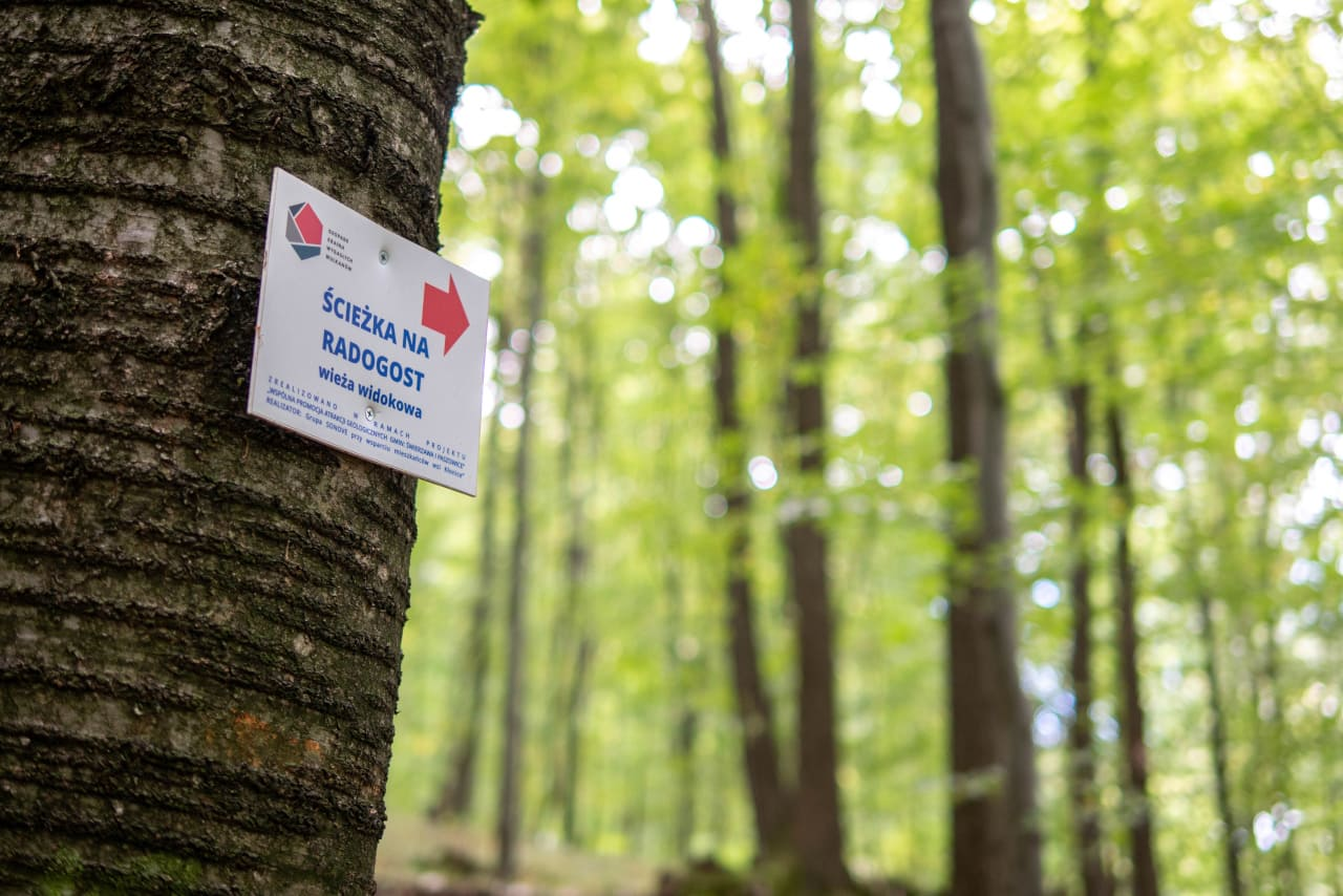 Ścieżka Szlak Turystyczny na Wieżę Widokową Radogost Park Krajobrazowy Chełmy1 Ciekawe Miejsca
