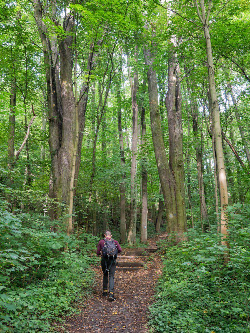 Leszczyna Skansen Górniczo-Hutniczy Dymarki Kaczawskie Park Krajobrazowy Chełmy3 Ciekawe Miejsca Historyczne
